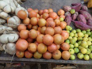 Farmers Markets of Mexico
